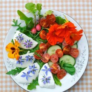 eetbare tuin in juli 15 - 6 van 6