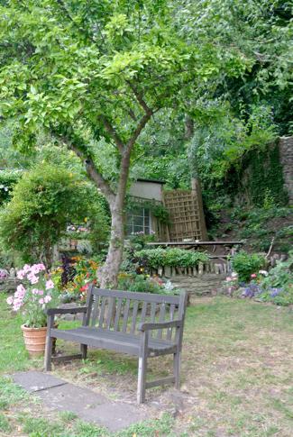 Clifton wood community garden