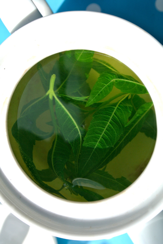 Verveine thee