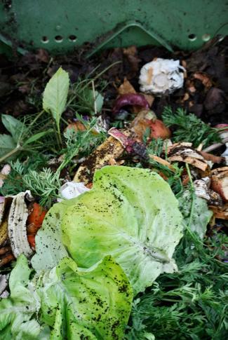 groente afval composthoop