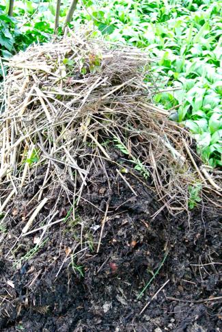 tuinafval composthoop