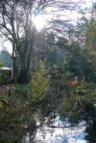 Amstelglorie volkstuinpark