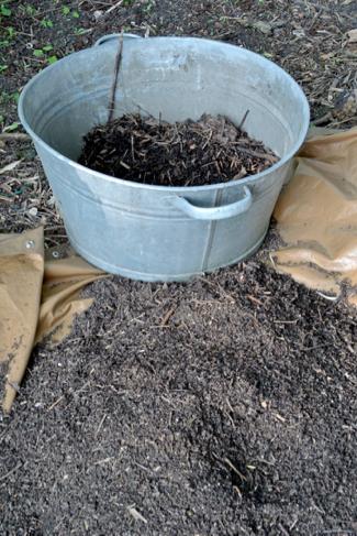 composthoop volkstuin