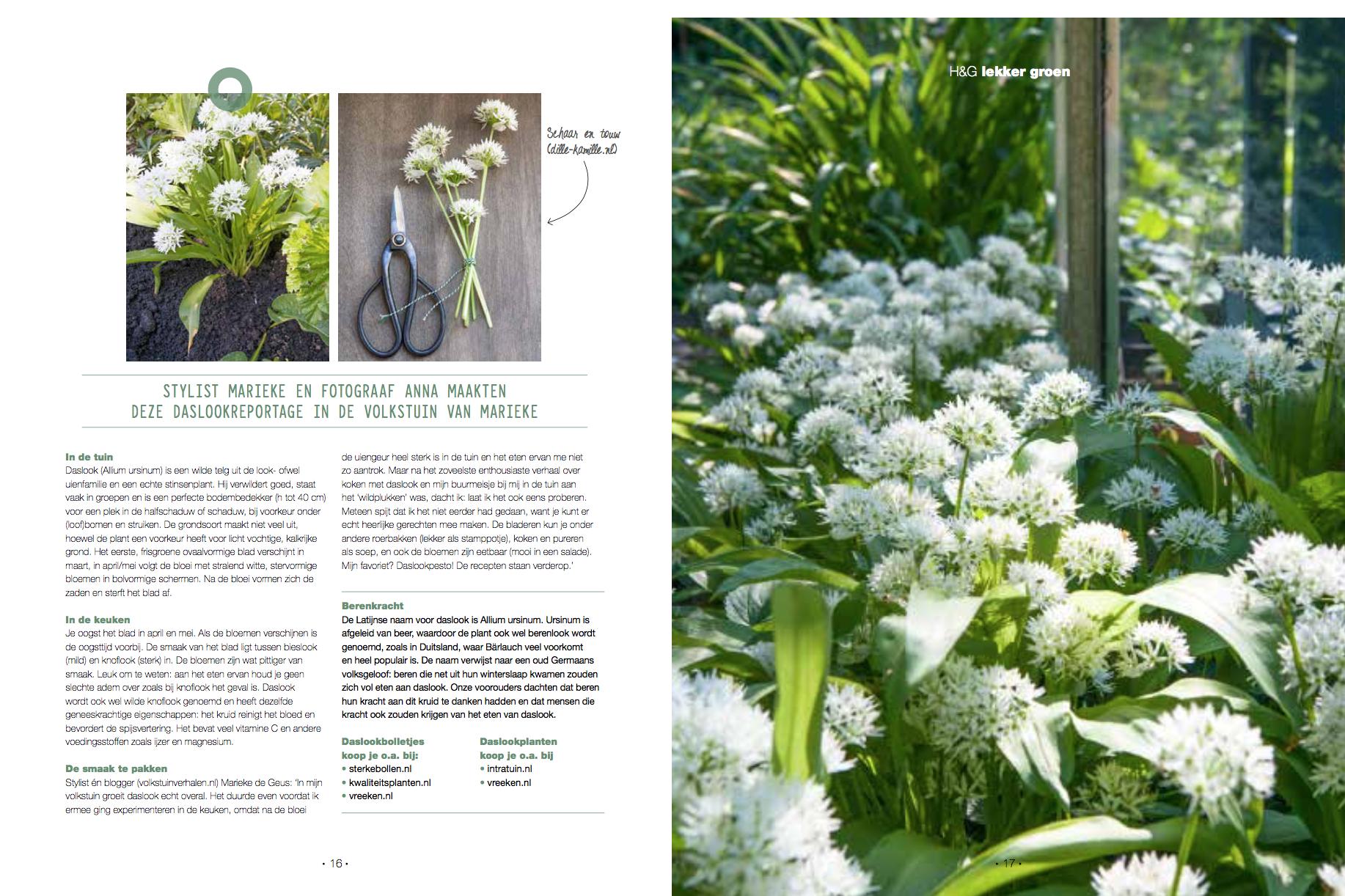 Daslook Home & Garden