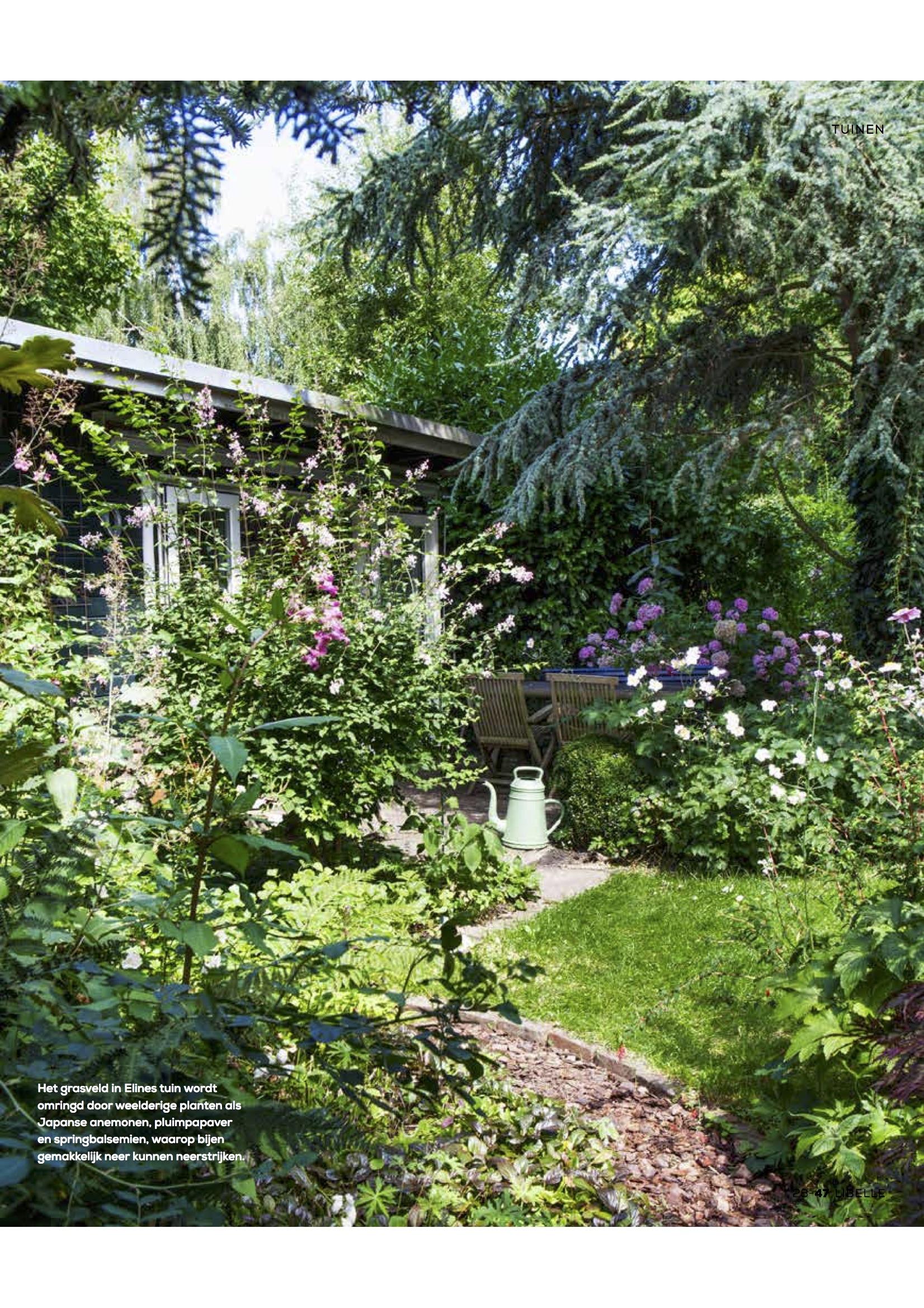 publicatie-bijenpark-Libelle